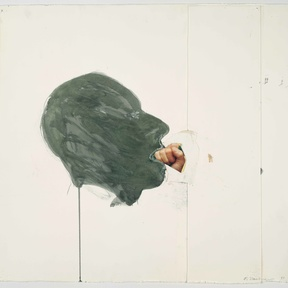 Bruce Nauman Disappearing Acts