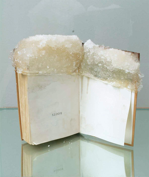 "Edgar Arcenaux, Failed Attempt at Crystallization, 2002, glass case, sugar, crystals, wood, mirror, and textbook, 55 3/4 x 18 x 20"". From ""Double Consciousness."""
