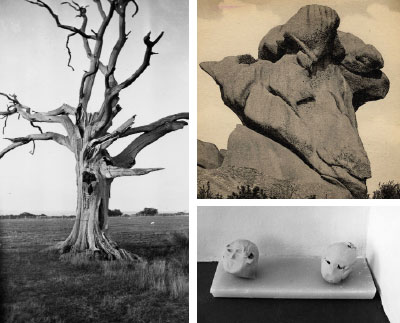 "Clockwise for top left: Paul Nash, Dead Tree, Romney Marsh, 1930–34, black-and-white photograph, 3 7/16 x 2 1/4"". Right, from top: Eileen Agar, Rocks Ploumanach, Britanny, France,  1936, cropped postcard, 3 1/16 x 3 1/16"". © Tate Archive. Marisa Merz, Deux têtes (Two Heads), 1983, clay  and paraffin, each 7 1/2 x 7 1/2 x 5 9/16"". © Archivo Merz, Turin."