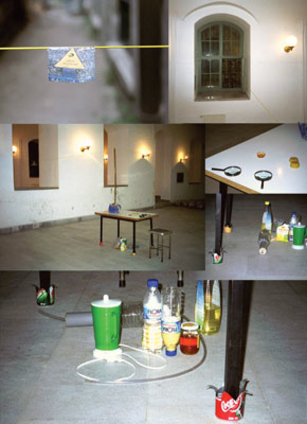 Tue Greenfort, Social Organism, 2001. Installation views, Technical University, Istanbul.