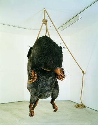"Mark Dion, Les Nécrophores—L'Enterrement (Hommage à Jean-Henri Fabre), 1997, synthetic mole, rope, cast resin insects, 98 7/16 x 49 3/16 x 55 1/8""."