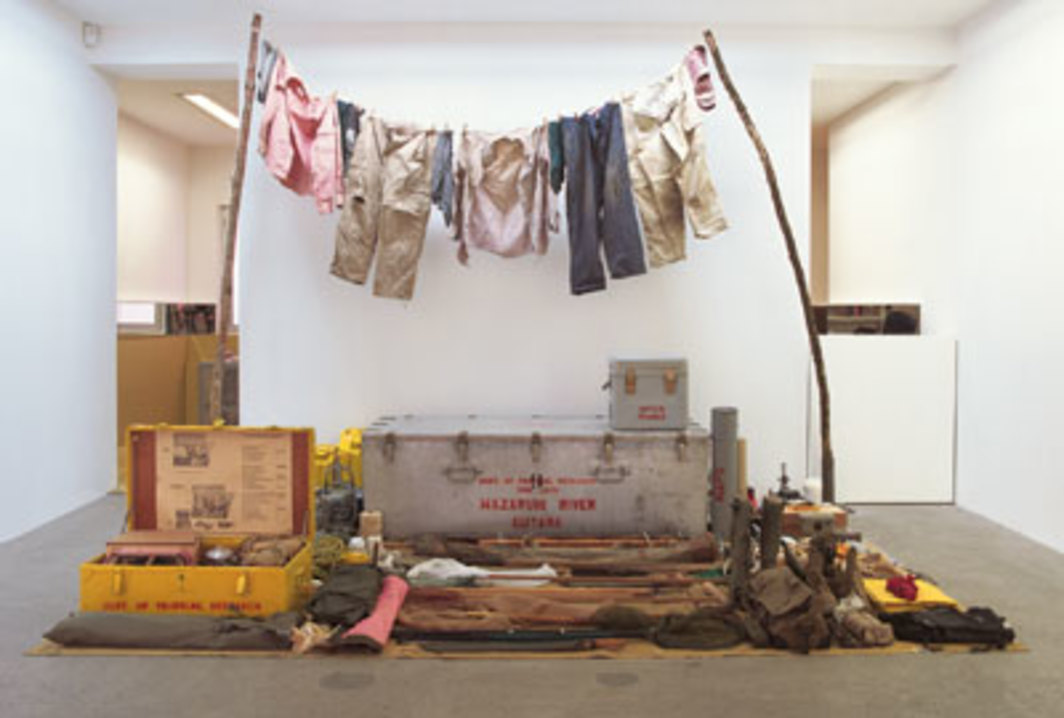 "Mark Dion, Department of Tropical Research, 2005, mixed media, 9' 9 3/8"" x 11' 2"" x 8' 2 1/2""."