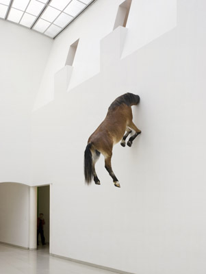 "Maurizio Cattelan, Untitled, 2007, taxidermied horse skin and fiberglass resin, 118 1/8 x 66 7/8 x 31 1/2""."