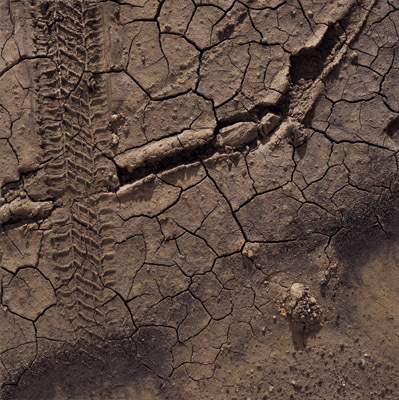 "Boyle Family, Study of Brown Mudcracks with Tire Tracks and Coal Dust, Portishead, 2006, mixed media, 48 x 48""."