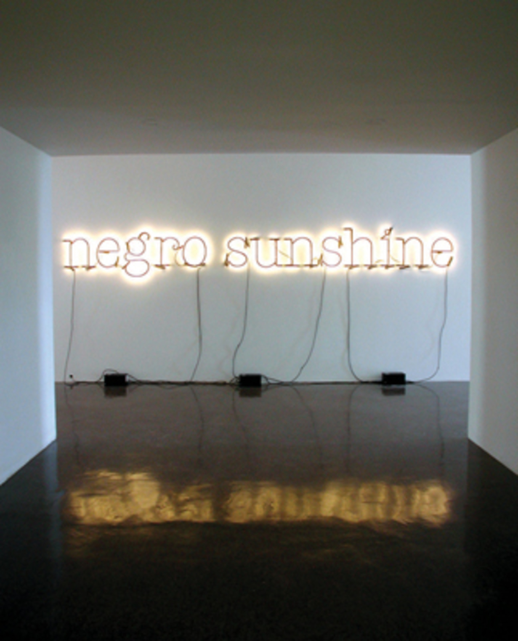 Glenn Ligon, Warm Broad Glow, 2005, neon, paint. Installation view, Renaissance Society, Chicago, 2008.