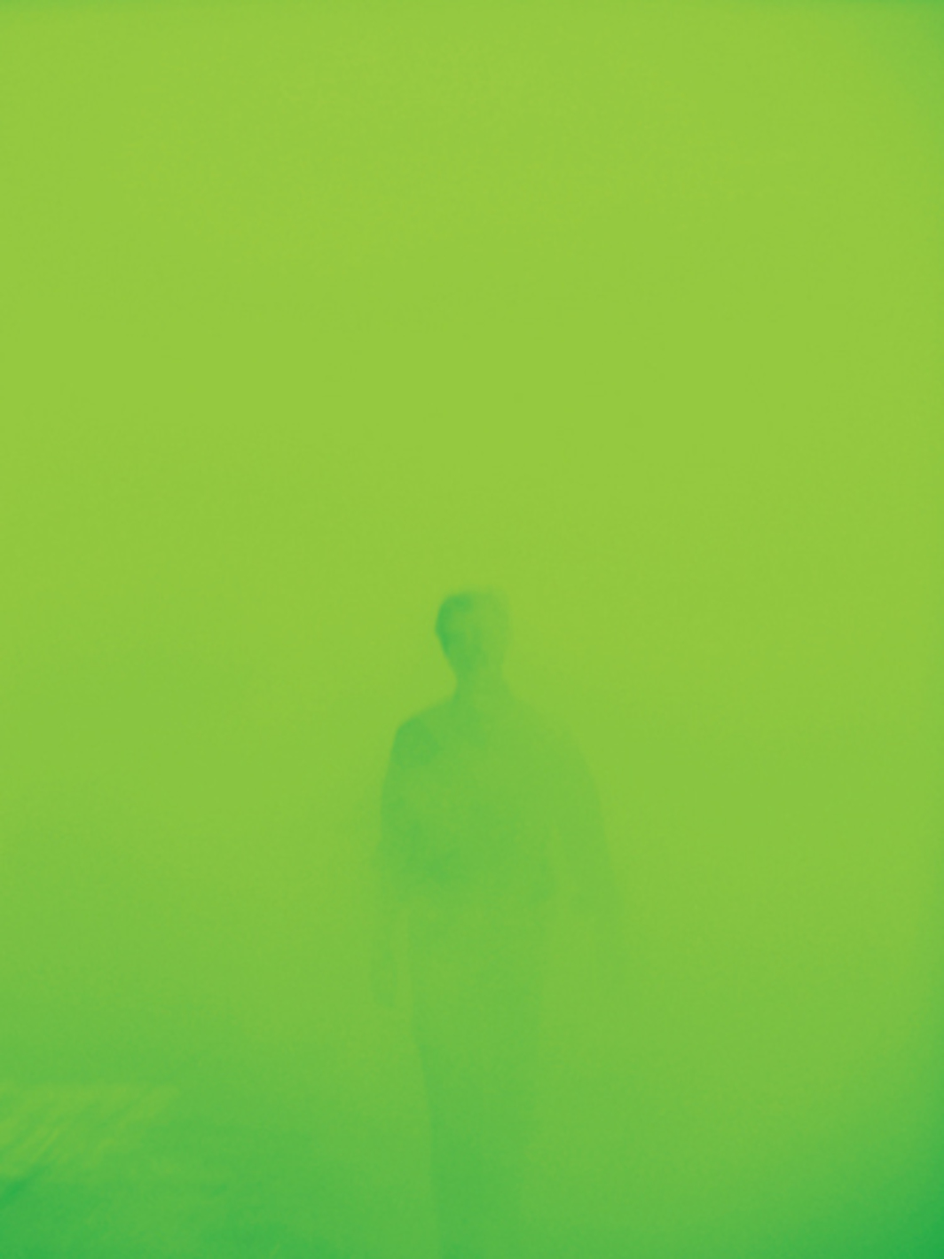 Ann Veronica Janssens, Lee 121, 2005, artificial mist and light. Installation view, Sucière. From the 8th Biennale de Lyon. Photo: Blaise Adilon.