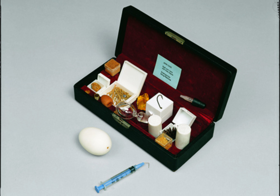 George Maciunas, Gift Box for John Cage: Spell Your Name with These Objects, 1972, leather-covered, red velvet-lined box, acorn, egg, glass stopper, plastic boxes of seeds, etc., 2 x 9 1/3 x 4""