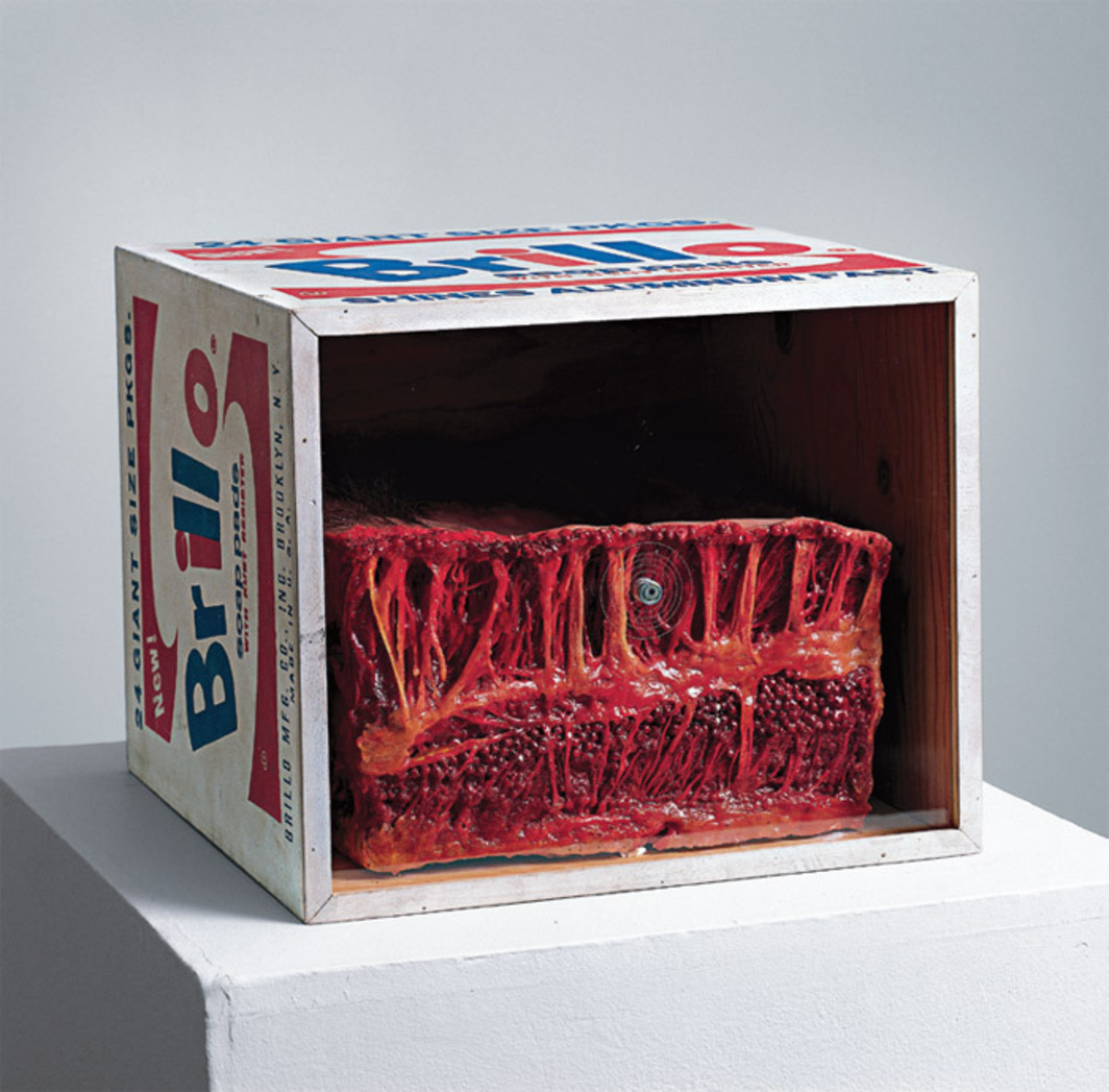"Paul Thek, Meat Piece with Warhol Brillo Box, 1965, wax, painted wood, Plexiglas, 14 x 17 x 17"". From the series ""Technological Reliquaries,"" 1964–67."