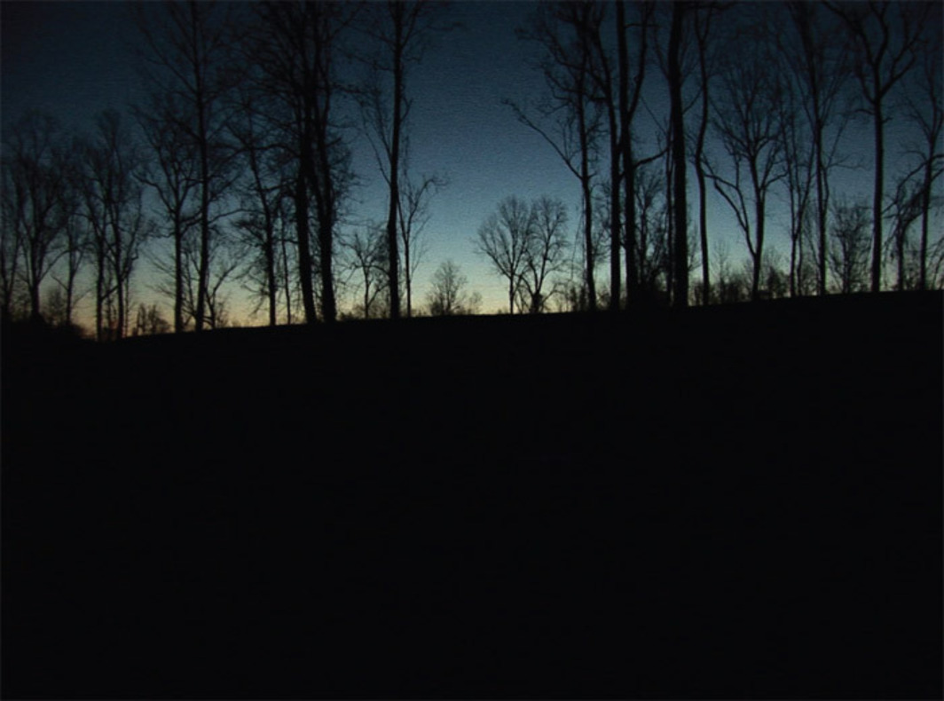 Kara Walker, Levee, 2011, still from a color video, 1 minute 50 seconds.