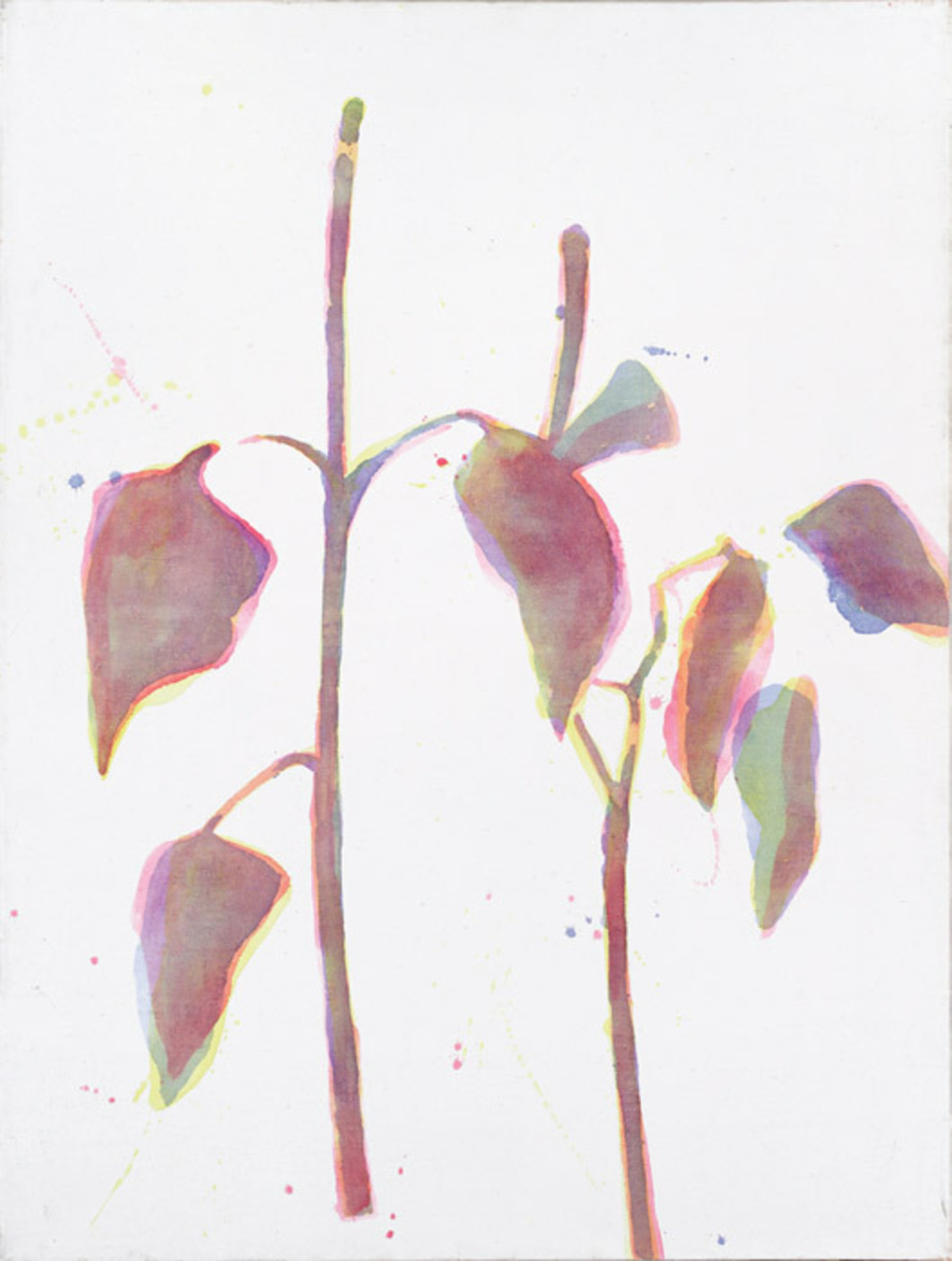 "Daniel Balabán, Plants, 1996, watercolor on canvas, 63 x 47 1/4"". From "". . . and don't forget the flowers."""