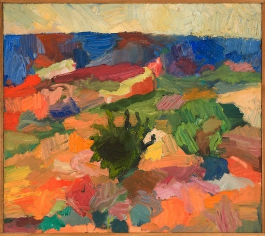 "David Reed, Oljato Bushes, 1967, oil on canvas, 27 x 60""."