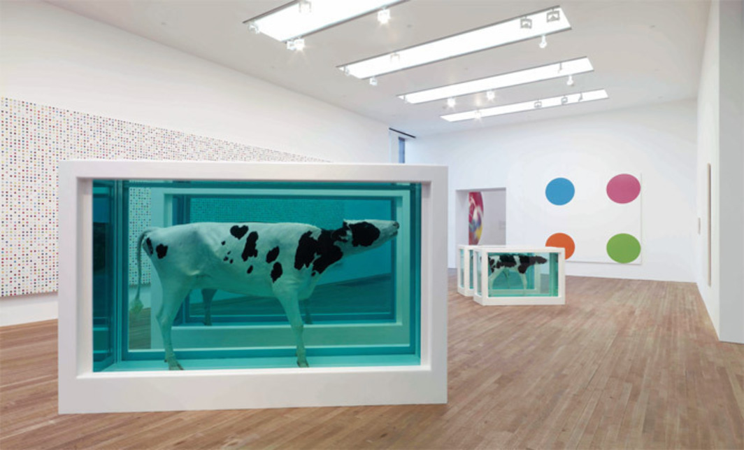 "View of ""Damien Hirst,"" 2012. Floor: Mother and Child Divided, 1993/2007. Walls, from left: Iodomethane, 1999–2001; Furegrelate, 2006. Photo: Prudence Cuming Associates."