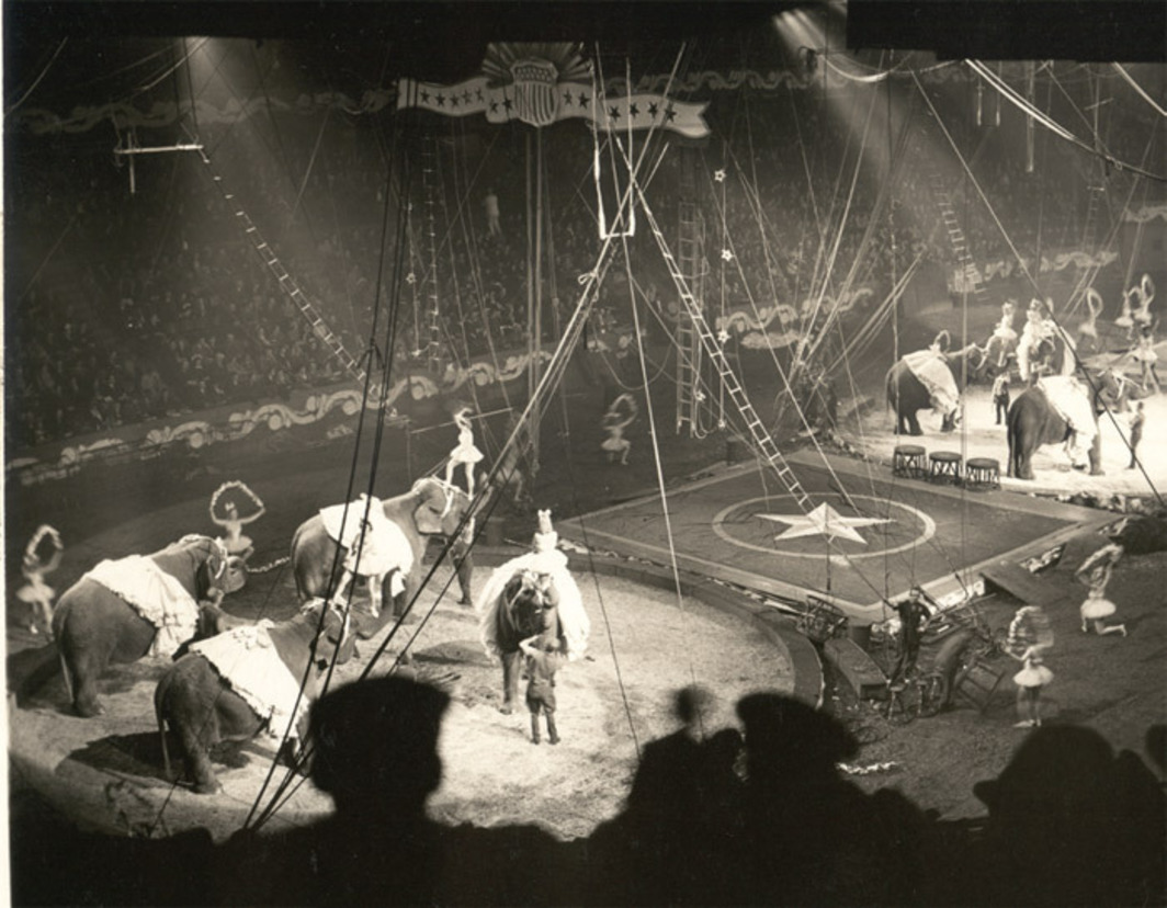 Ringling Bros. and Barnum & Bailey Circus elephants performing a ballet choreographed by George Balanchine, Madison Square Garden, New York, 1942.