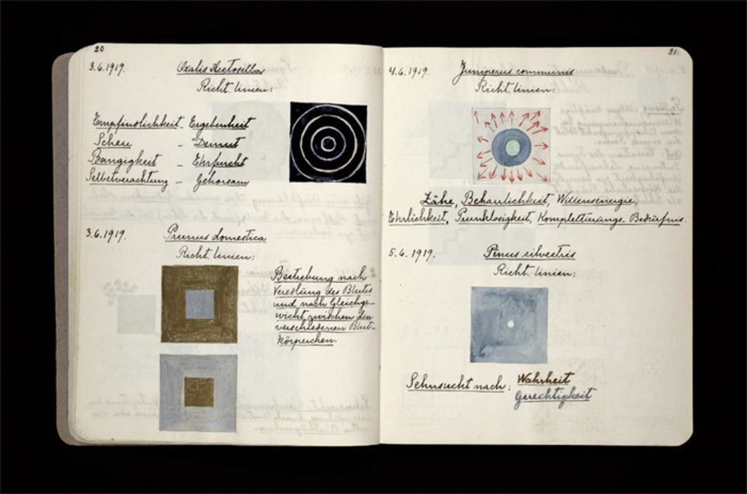 Spread from Hilma af Klint's sketchbook containing drawings of flowers, mosses, and lichen and their astral guidelines, 1919.