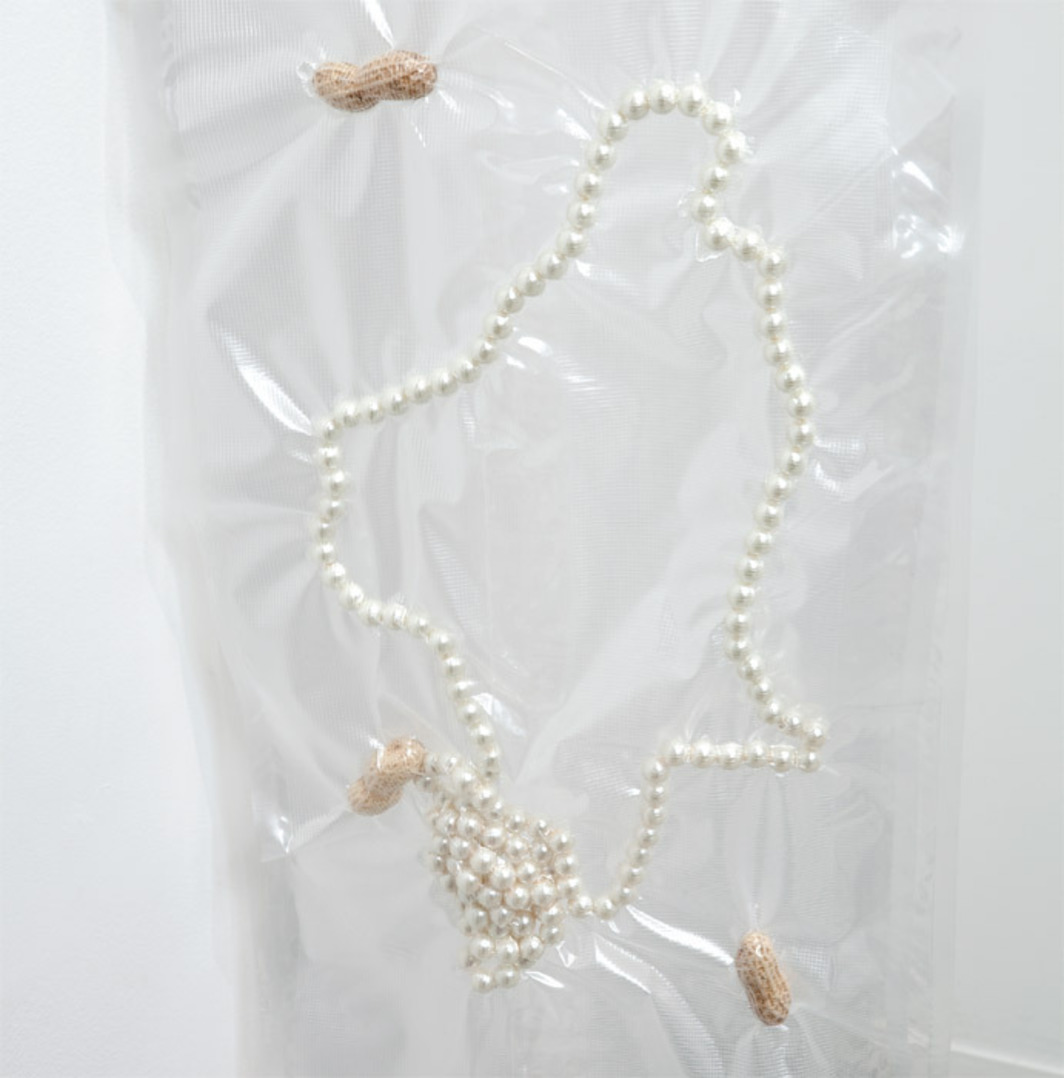 "Anicka Yi, I'm Every Woman I Ever Met (detail), 2011, vacuum-sealed peanuts and pearls, Plexiglas, 57 x 15 x 22""."
