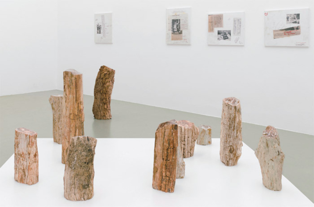 "View of ""Christian Mayer,"" 2012–13."