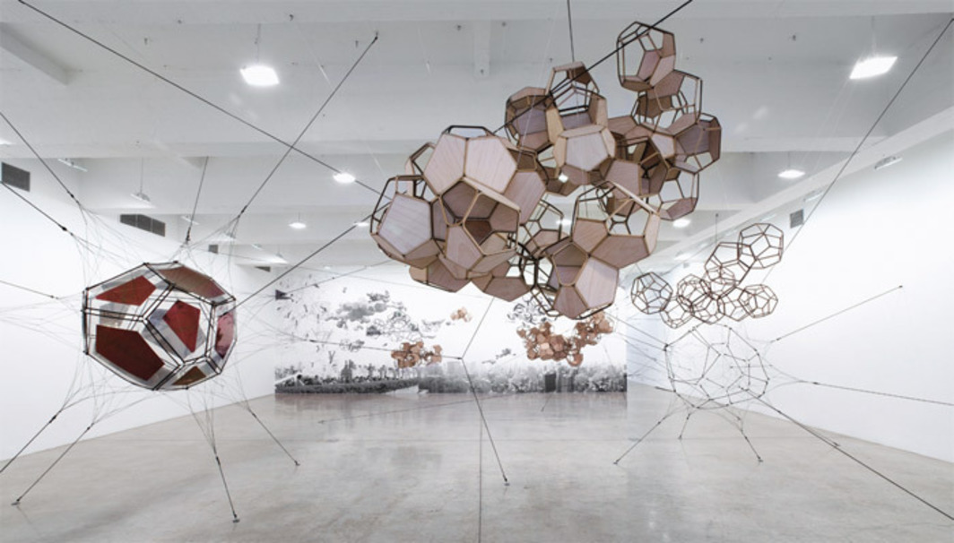 "View of ""Tomás Saraceno,"" 2012."