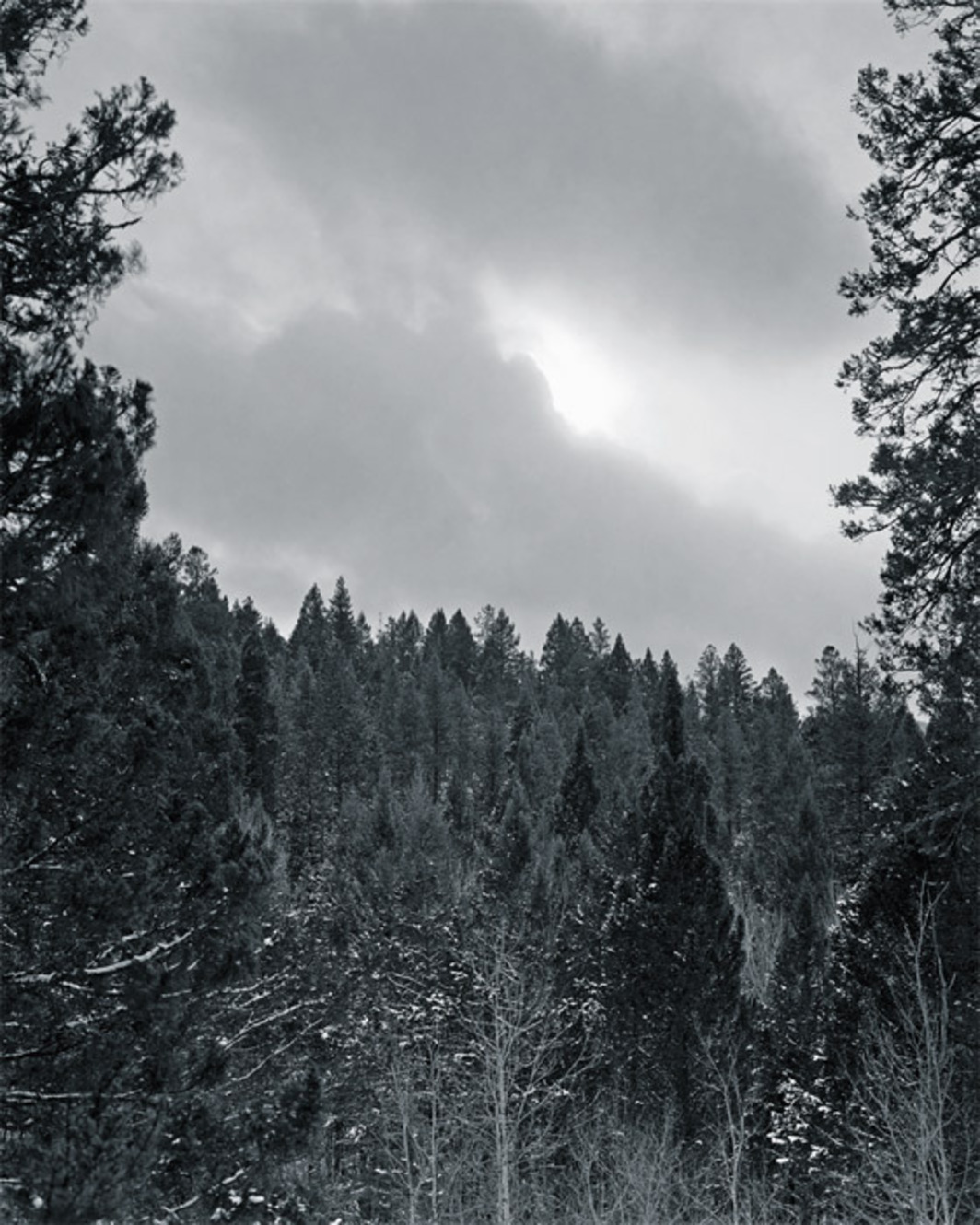 "Alec Soth, The Unabomber's View, 2006, black-and-white ink-jet print, 30 x 24""."