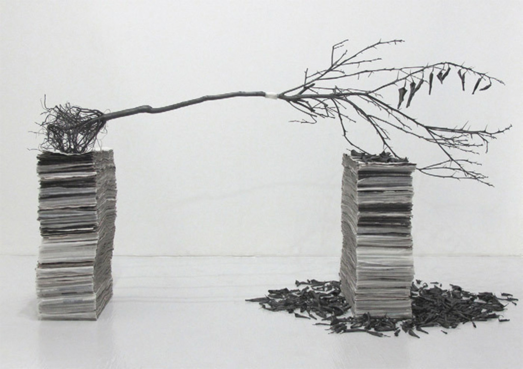 "Diana Shpungin, I Especially Love You When You Are Sleeping, 2011, graphite pencil, citrus tree, citrus leaves, medical tape, newspaper obituaries, 24 x 36 x 68""."