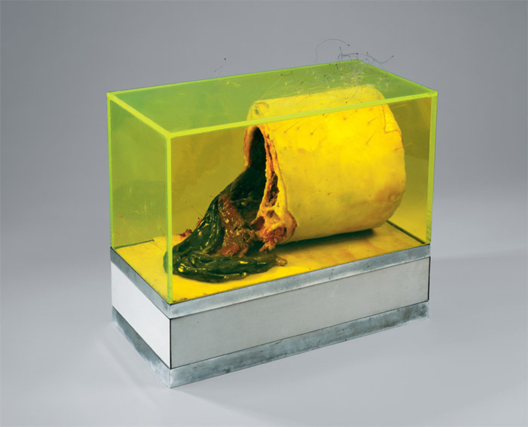 "Paul Thek, Untitled, 1966, wax, paint, polyester resin, nylon microfilament, wire, plaster, plywood, melamine laminate, rhodium-plated bronze, Plexiglas, 14 x 15 x 7 1/2"". From the series ""Technological Reliquaries,"" 1964–67."