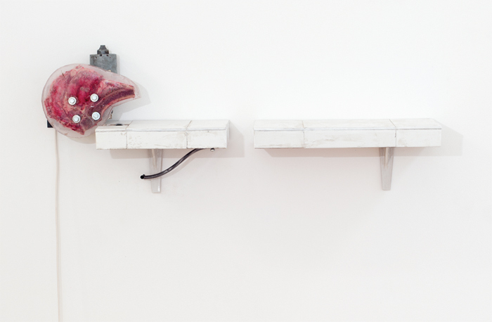 "Dorian Gaudin, Pierre and Renée (detail), 2014, resin, motor, wood, ceramic tiles, steak, 13 3/4 x 35 1/2 x 7""."