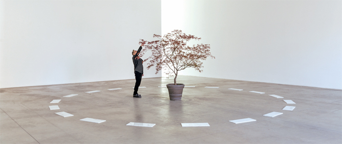 David Lamelas, Segnalamento (Signaling), 2014, marble slabs, maple tree. Installation view.