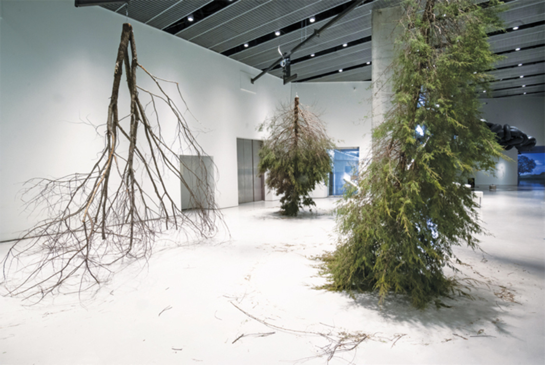 Michael Sailstorfer, Forst (Forest), 2010/2014, trees, motors, steel, dimensions variable.