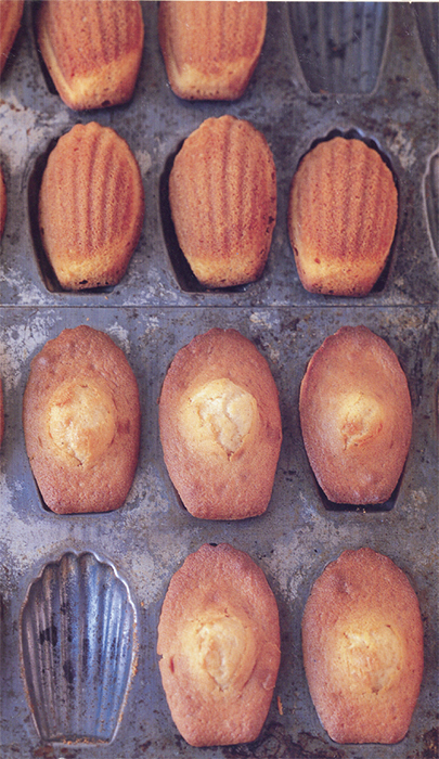 *Chestnut-honey madeleines from Claudia Fleming's _The Last Course: The Desserts of Gramercy Tavern_* (Random House, 2001). Photo: Dana Gallagher.