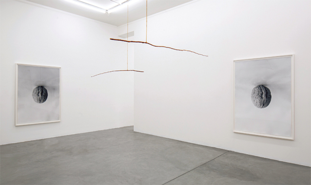 View of Becky Beasley, 2014. From left: Fall I, 2014; Bearing III, 2014; Bearing II, 2014; Fall III, 2014.