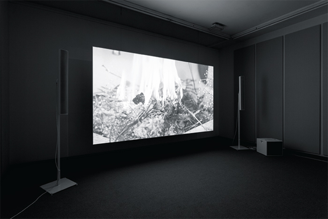 James Richards, Raking Light, 2014, digital video, black-and-white and color, sound, 7 minutes 5 seconds. Installation view, Cabinet Gallery, London.