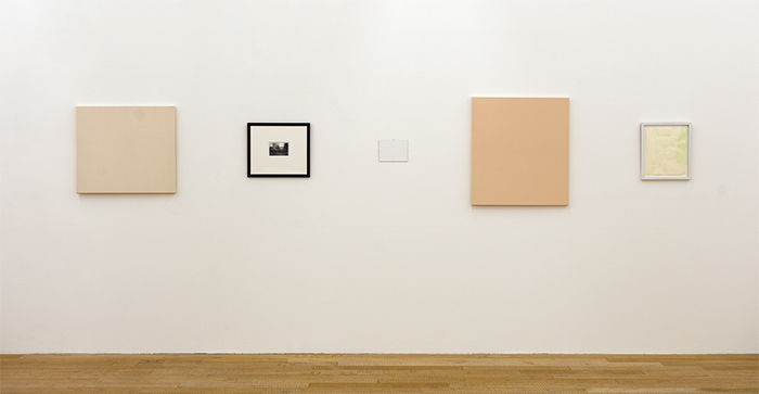 Bruno Jakob, Flesh Net, 1995, two canvases, one canvas board, one framed photograph, one framed work on paper. Installation view. Photo: Thomas Strub.