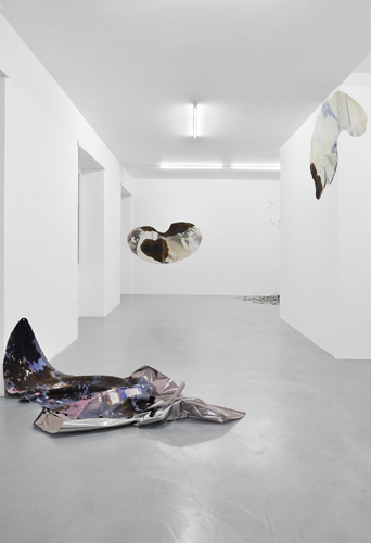 "View of ""Sarah Ancelle Schönfeld: Excuse Me, May I Have Some Gravel Tea?,"" 2015–16."