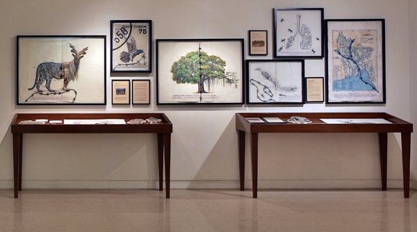 Reena Saini Kallat, Hyphenated Lives, 2013–15, gouache, charcoal, ink, electrical wire on handmade paper, black boards, wooden vitrines, unfired clay, postcards, dimensions variable.
