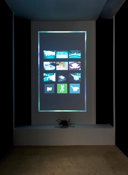 Sara Ludy, Low Prim Room, 2012–16, video, sand,  rosewood, tassel, coins, dimensions variable.