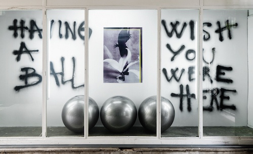 "Jacopo Miliani, dot dot dot, 2016, spray paint on wall, ink-jet print, fitness balls, 73 x 177 x 30""."