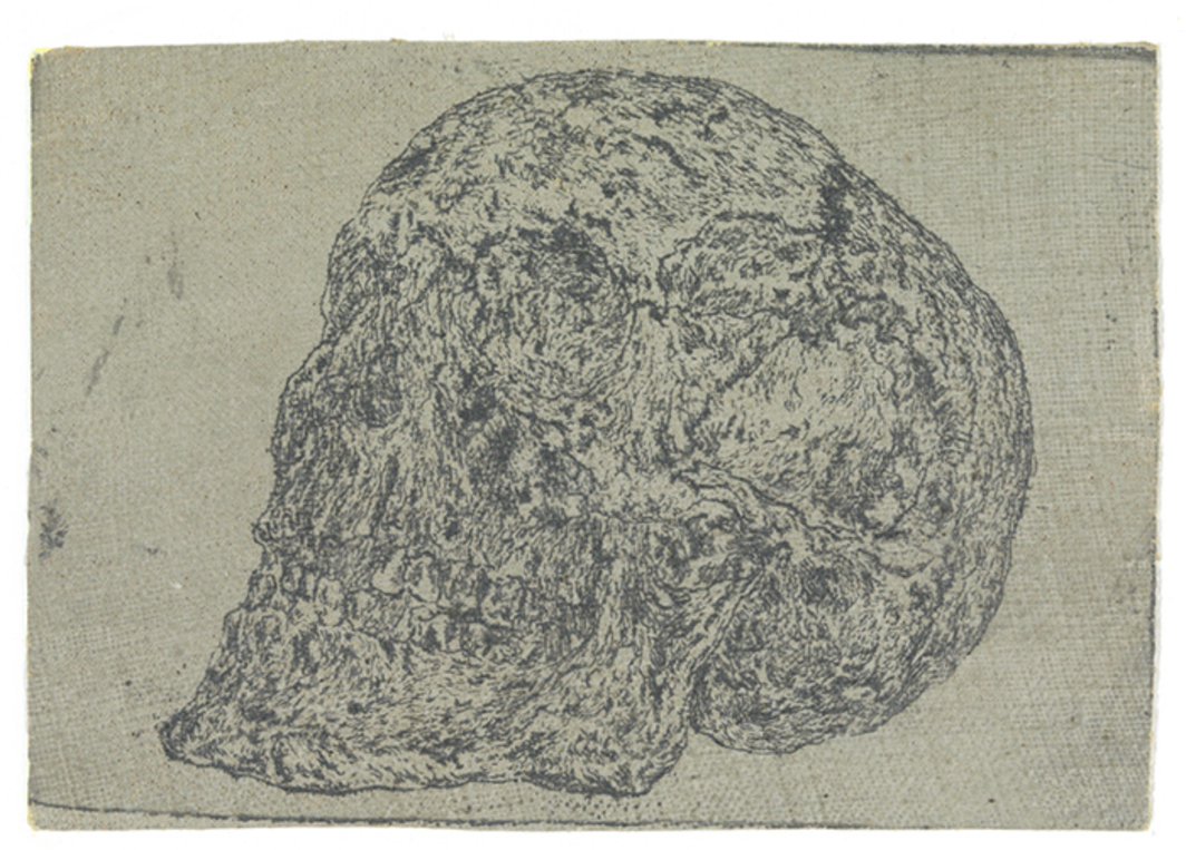 "Hercules Segers, Skull, ca. 1615–30, etching on dyed linen, 2 7/8 × 4 1/8""."