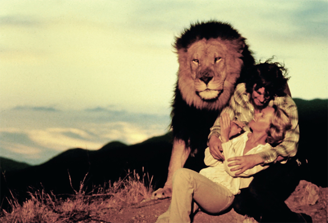 Noel Marshall, Roar, 1981, 35 mm, color, sound, 102 minutes. Hank (Noel Marshall) and Madelaine (Tippi Hedren).