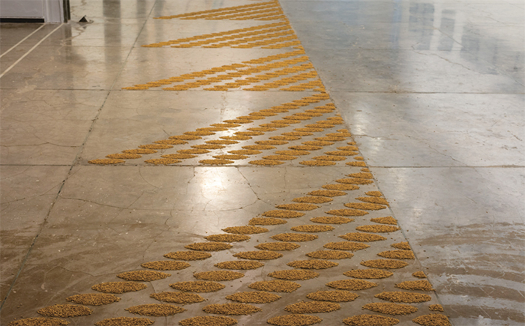 Navjot Altaf, Pattern, 2015–16, rice seeds on floor. Installation view. Photo: Anil Rane.