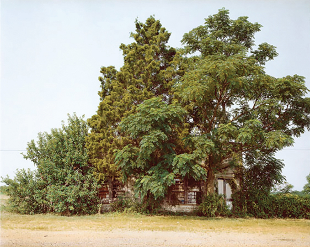 "William Christenberry, Palmist Building (Summer), Havana Junction, Alabama, 1980, ink-jet print, 26 5/8 × 34 1/8"". © William Christenberry."