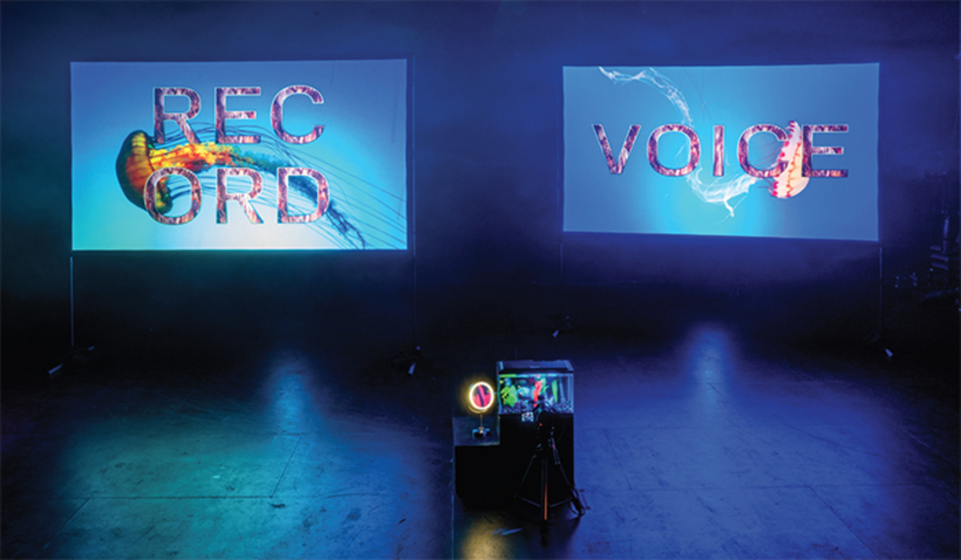 Sara Magenheimer, Best Is Man's Breath Quality, 2017, aquarium, Glo-Fish, vanity mirror, video camera, tripod, two-channel HD video projection (color, sound, 15 minutes 30 seconds). Installation view. Photo: Jason Mandella.