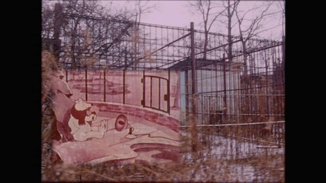 Amy O'Neill, Zoo Revolution and The Well Fed Wolf, 2017, 16 mm transfer to HD video, color, sound, 8 minutes 6 seconds.