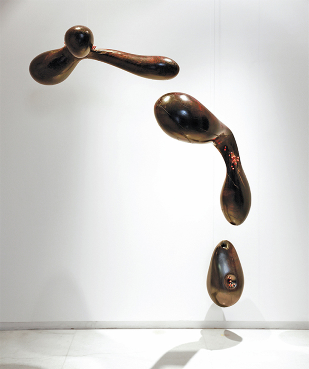 "Ranjani Shettar, Remanence from last night's dream, 2011–16, rosewood, lacquered wood, pigments, 72 × 50 × 35""."