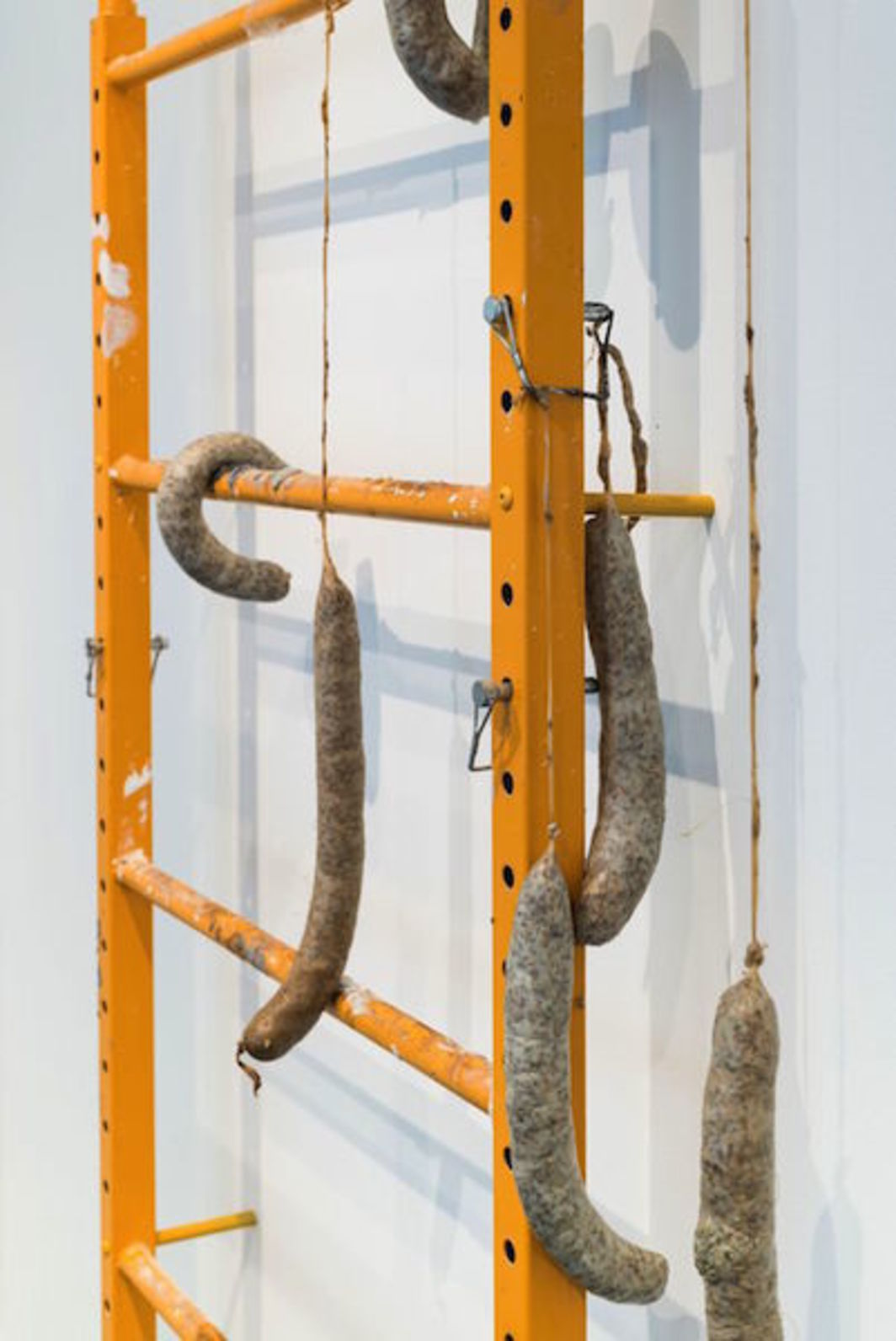 "Derek Franklin, Hanging Around (Healing Sausages for Communal Gatherings) (detail), 2017, steel, clamps, sausage casing, fennel, lard, 92 x 44 x 6""."