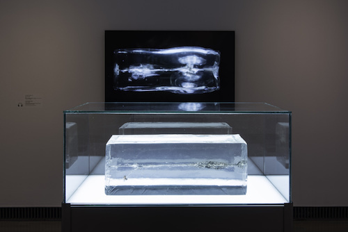 The Propeller Group, AK-47 vs. M16, 2015, fragments of AK-47 and M16 bullets, ballistics gel, vitrine, single-channel digital video. Installation view, 2017.