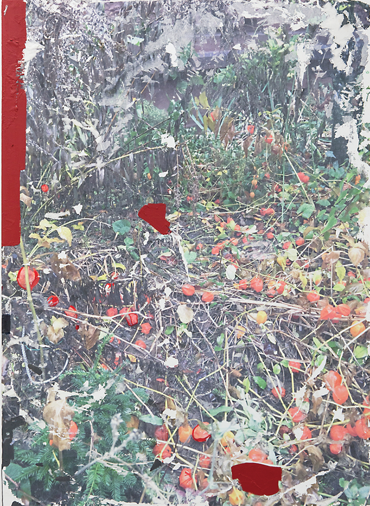 "Lara Langer, What Decomposes Is Nature, 2017, photographic transfer, acrylic, and marker on canvas, 43 1/4 x 31 1/2""."