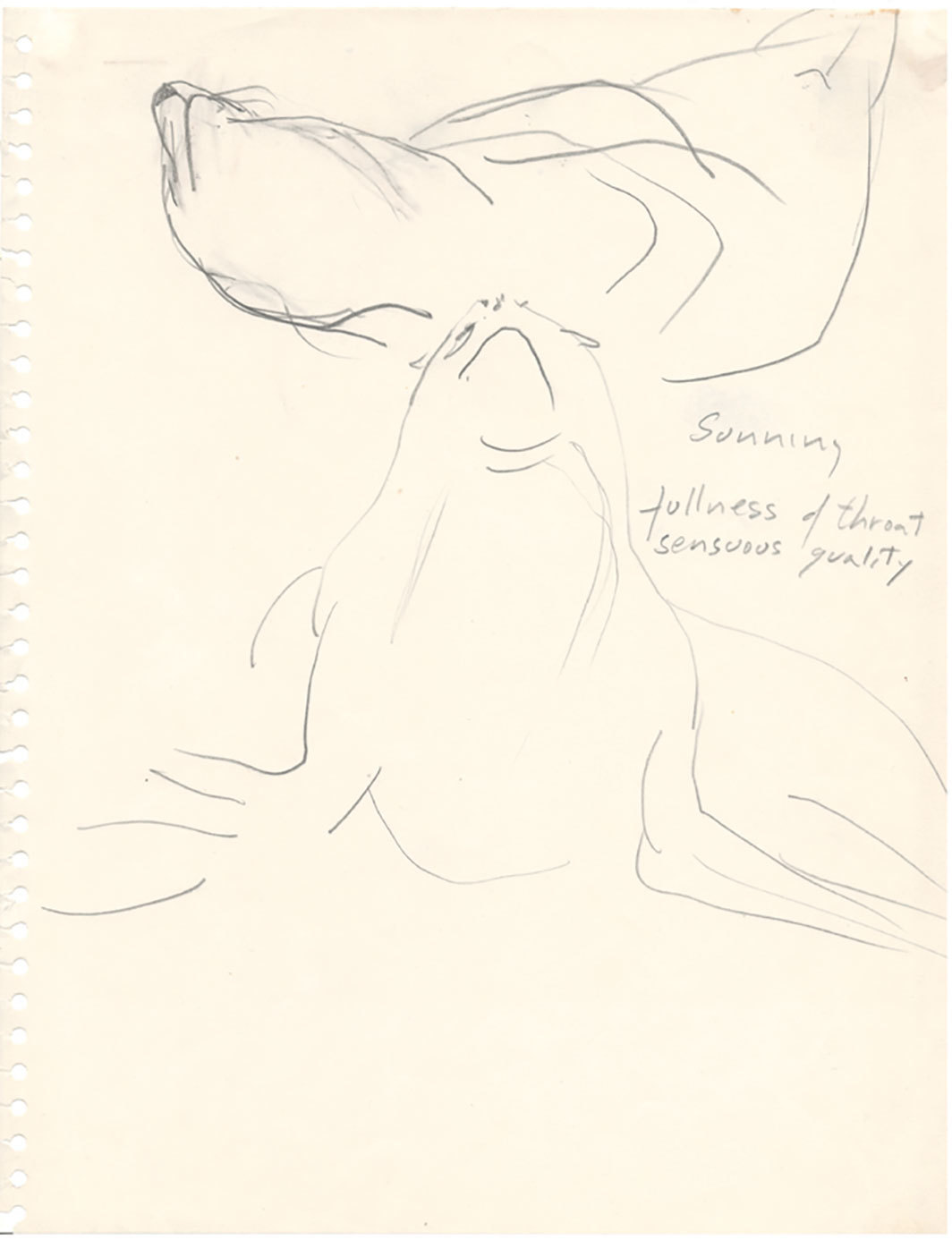 "Simone Forti, Sea Lions Sunning Fullness of Throat Sensuous Quality (Animal Study), 1968, graphite on paper, 11 × 8 1⁄2""."