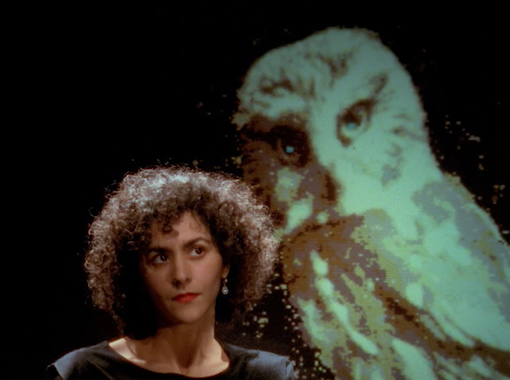Chris Marker, The Owl's Legacy, 1989, 16mm/35mm/video to DCP, color, sound, 350 minutes. Angélique Ionatos.