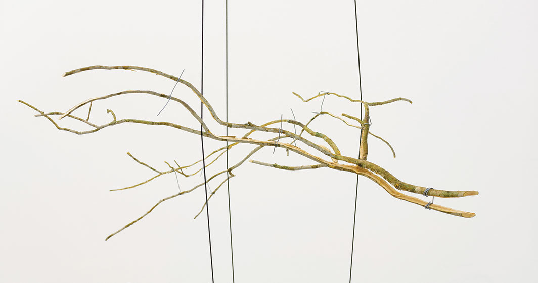 Daniel Steegmann Mangrané, Natureza geométrica/biología (Geometric Nature/Biology), 2018, branch, rubber bands, ropes, metal, dimensions variable.