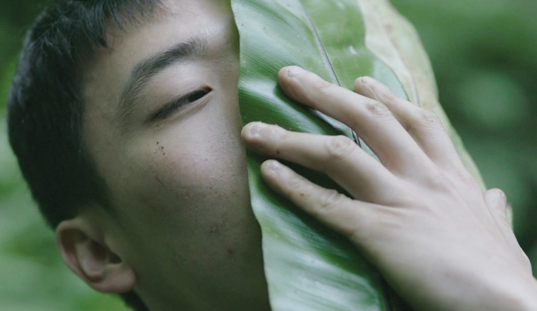 Zheng Bo, Pteridophilia 2, 2018, 4K video, color, sound, 20 minutes 30 seconds. From the Taipei Biennial.