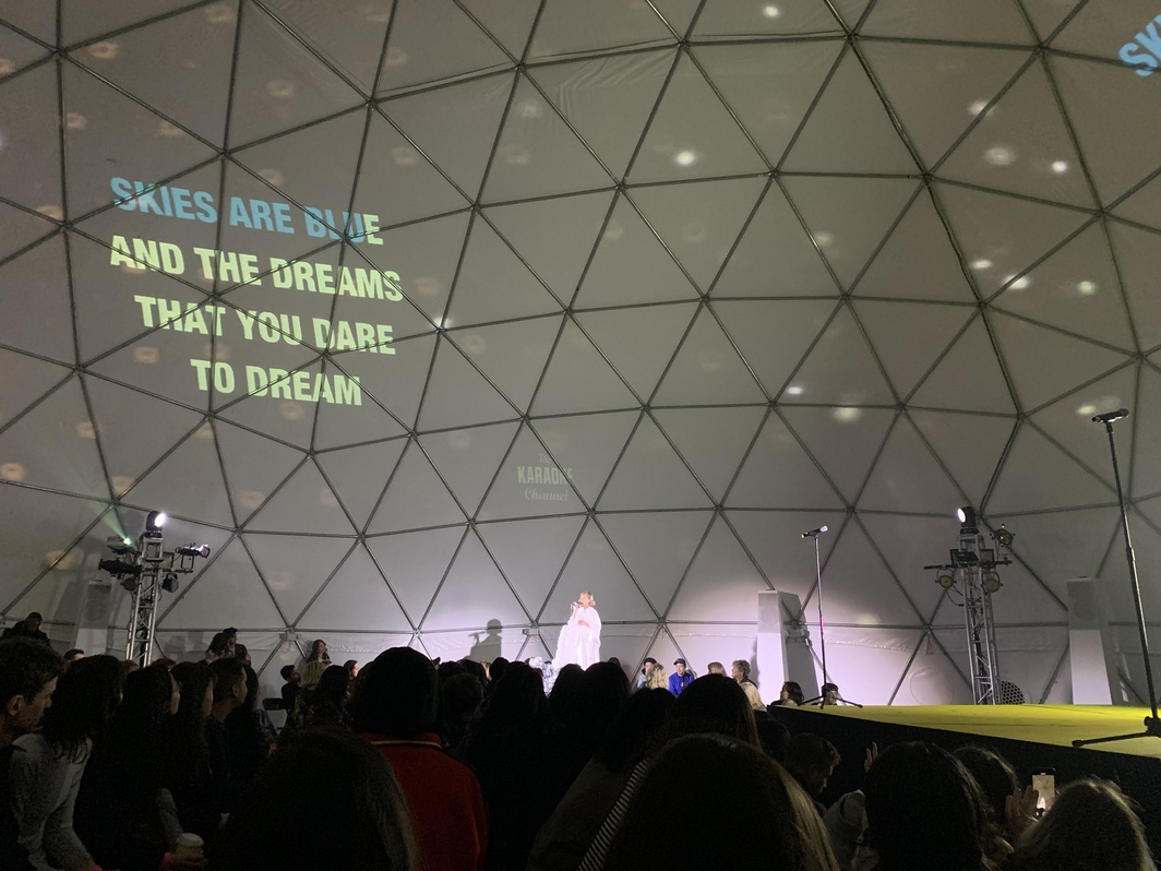 VW dome at MoMA PS1. Photo: Taylore Scarabelli.